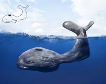 Детский рисунок кита