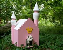Для собак с короной, розовая